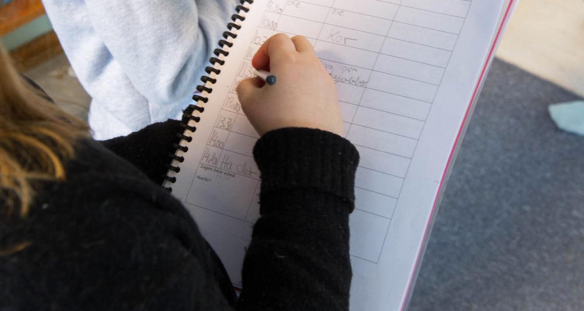 Loggboka i grunnskolen
