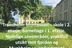 Trondheims beste skole?